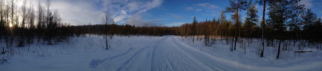 Лыжи7