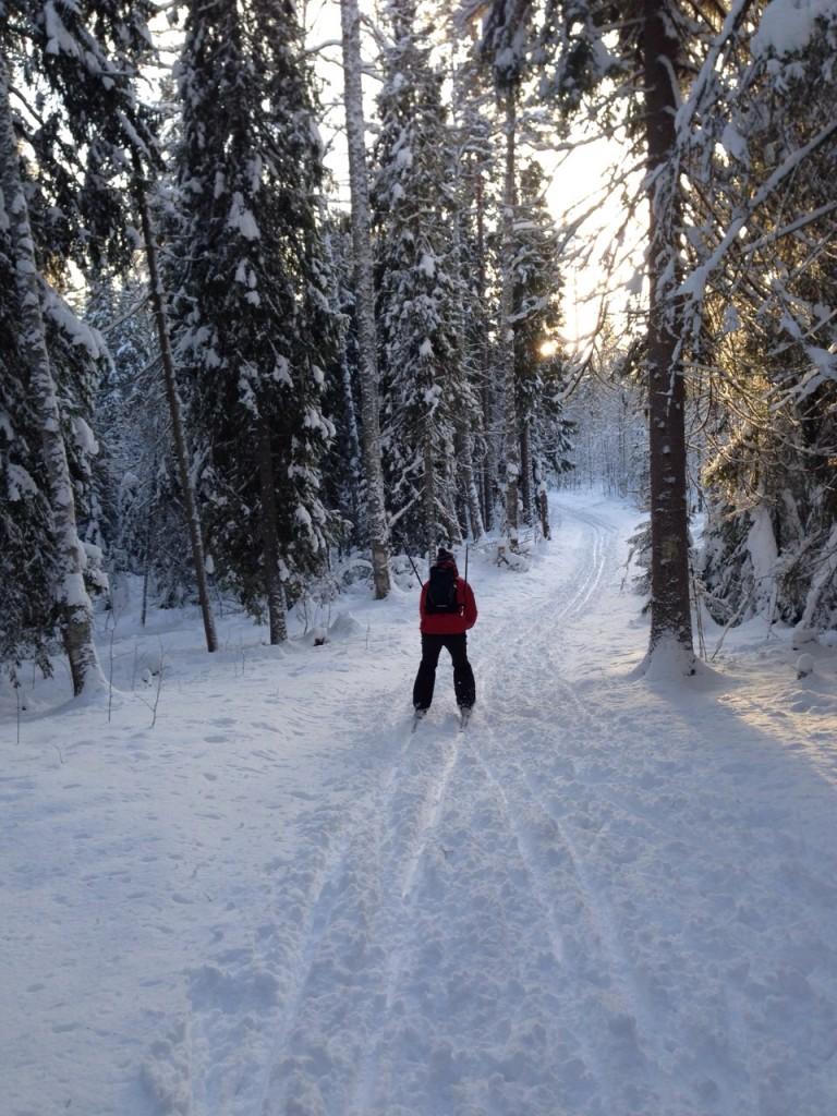 Лыжи8