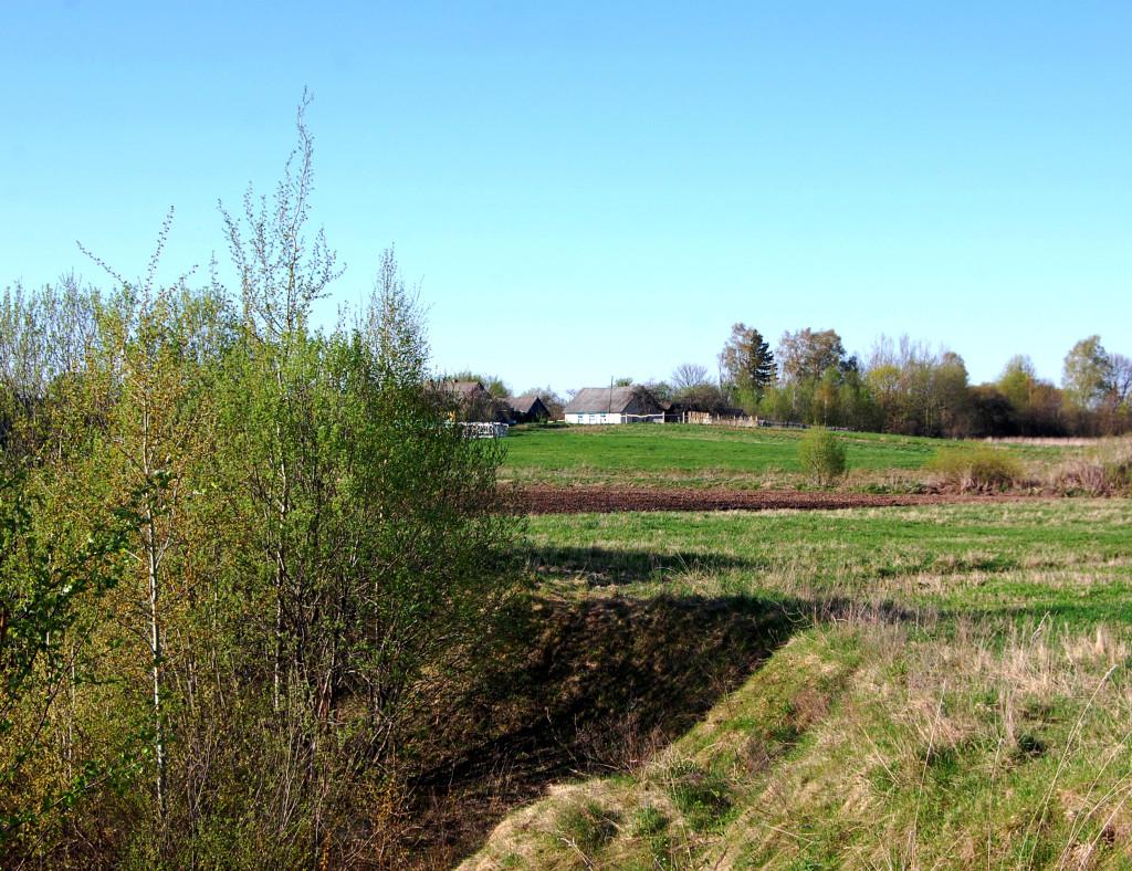 Деревня Заборовье